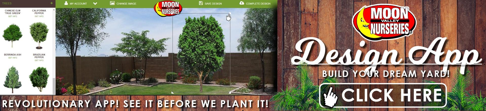 Backyard-Builder-Landing-Page-Banner-Image.jpg