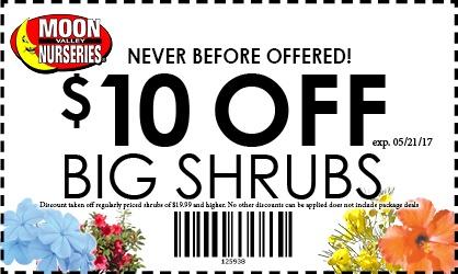 $10OFFSHRUBSONLINE--large--WEEKEND-ONLY-19.jpg