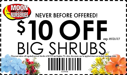 $10OFFSHRUBSONLINE--large--WEEKEND-ONLY-19.jpg