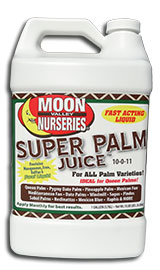 Palm-Juice.png