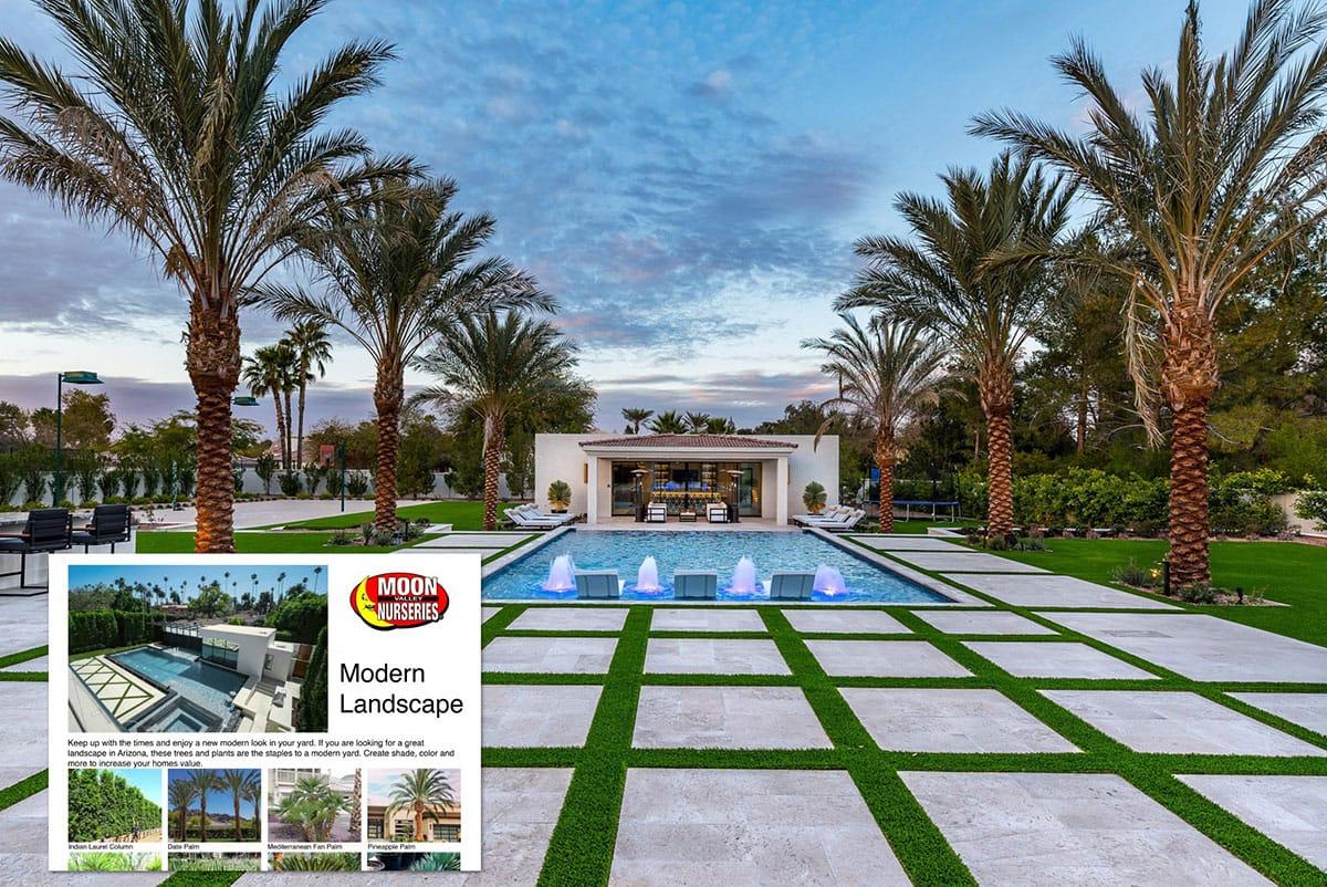 Arizona Modern Landscape Guide